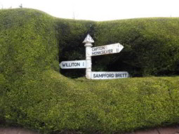 Signpost in hedge